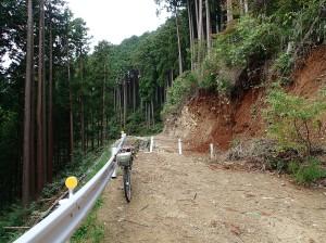 作業林道どん詰まり