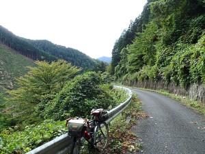 盆堀林道-2