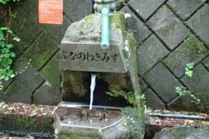玉原湿原-3