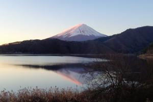 朝富士-ラスト