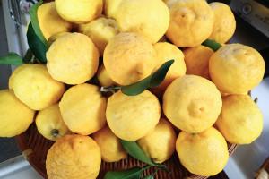 柚ポン酢-1